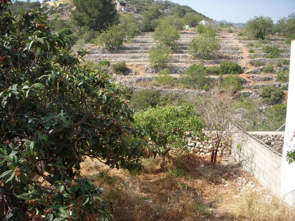 Land in Gata de Gorgos